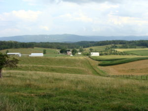 Eastern view of Berry-Moore Farm