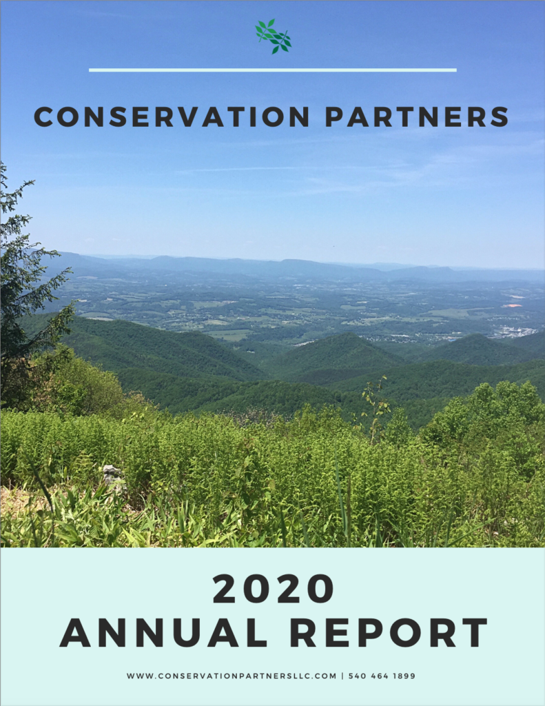 Our 2020 Annual Report